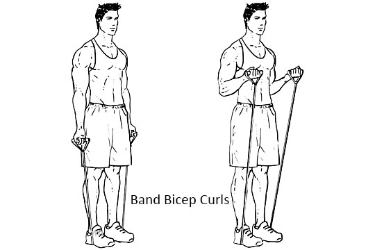 Band Bicep Curls