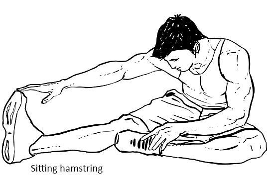 Sitting hamstring