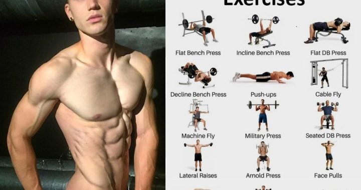 chest exercises and rear delt exercises