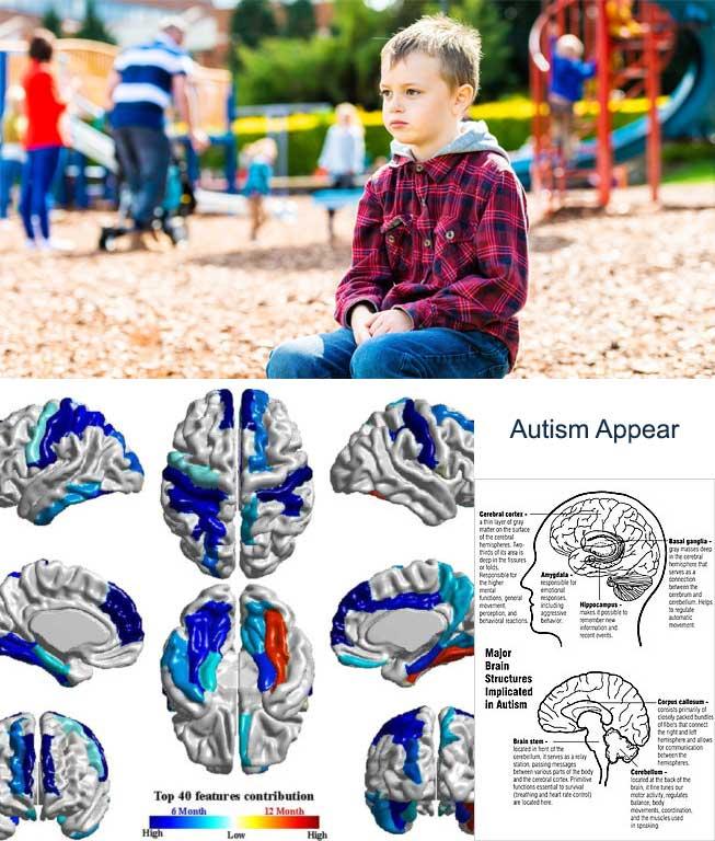 Autism Appear